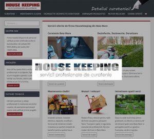 Servicii-de-curatenie-Baia-Mare-Dezinsectie-HouseKeeping